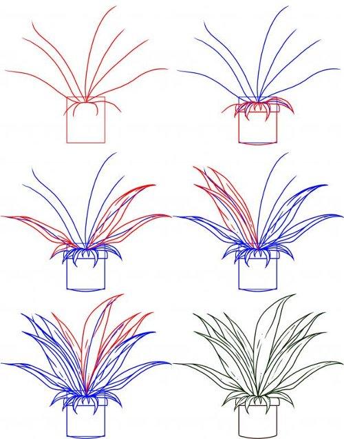 Как рисовать растенье