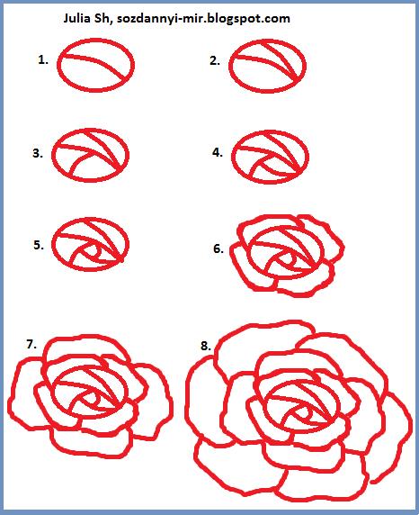 Нарисовать розу карандашом поэтапно ребенку 9 лет