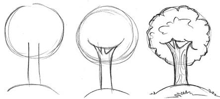Как нарисовать дуб карандашом поэтапно для начинающих