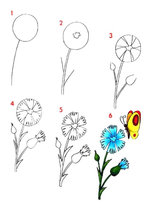 Цветок нарисовать схемы